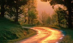 Golden Road, France_2